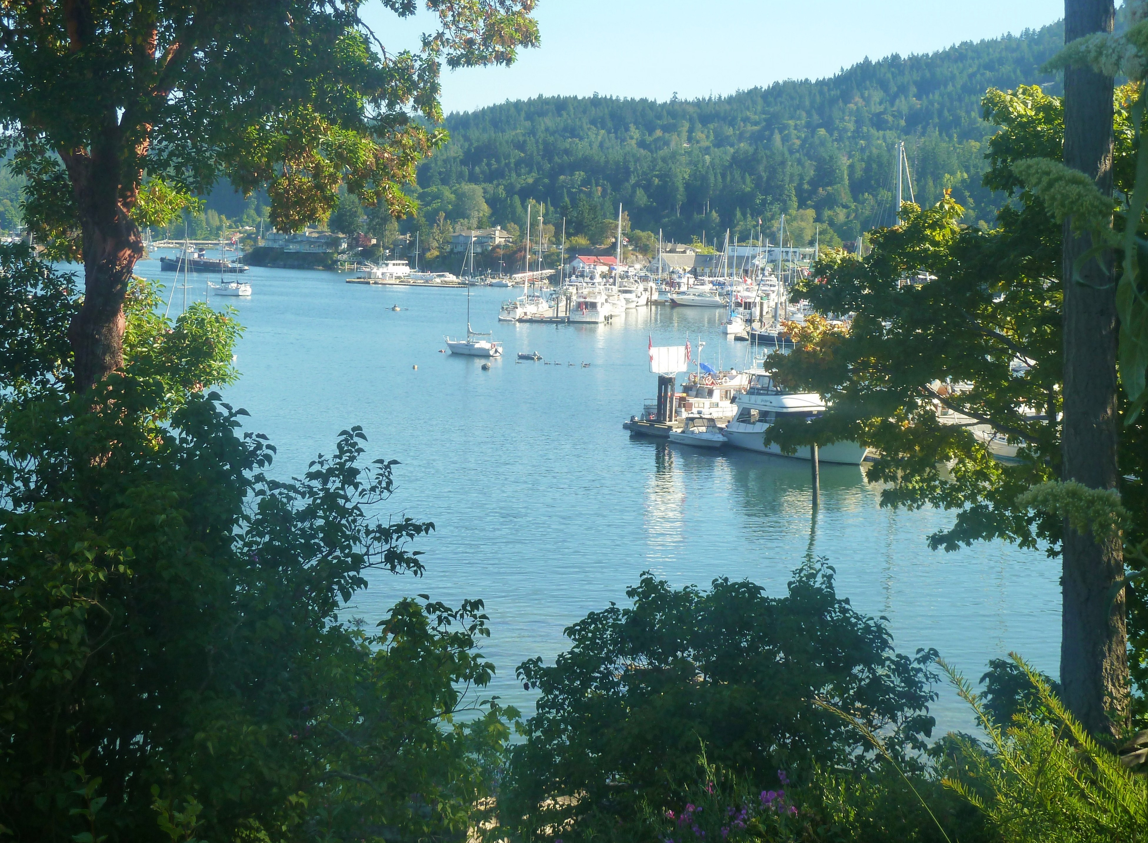 salt spring island buddhist personals Chanting names once forgotten: the zen women  female ancestors dating back 2,500  but the one most commonly used is the circle designed by salt spring island .
