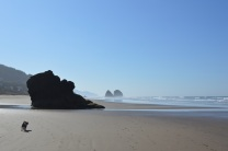 cannon beach 048