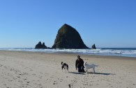 cannon-beach-1641